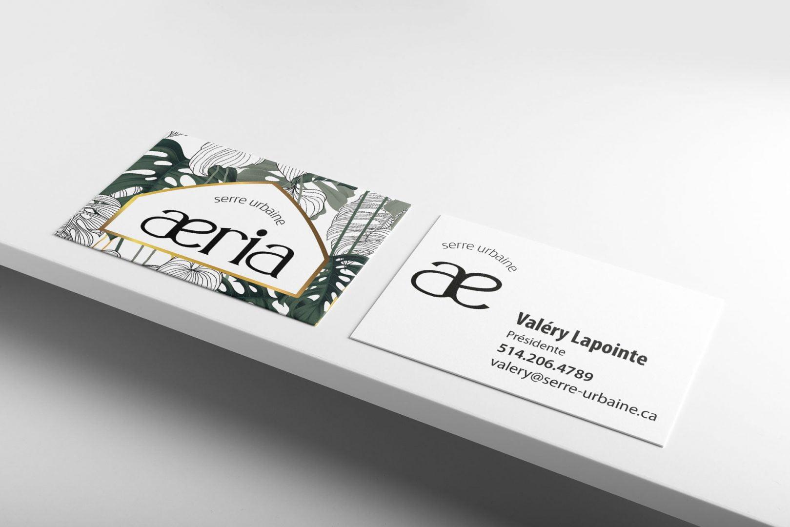 aeria-carte-affaire-presentation